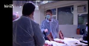 Ne feledjük, mit tett Gyurcsány a madárinfluenza idején!