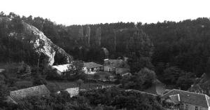 Tudtad, hogy egy ideig egy filmcsillag is a Veszprémi Állatkertben élt?