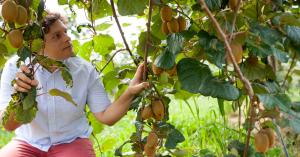 Az agráriumra is nagy hatással van az éghajlatváltozás