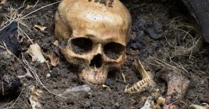 Borzasztó! 14 év körüli kislány maradványait találták meg a Balatonnál