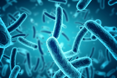 Tárgyak, amiken több baktérium lehet, mint a WC-ülőkén