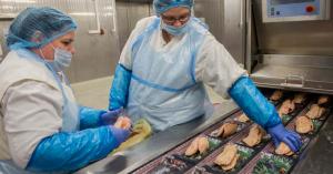 Beszűkült a liba- és a kacsamáj piaca