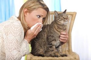 Az is tarthat kisállatot, aki allergiás a kutyára, macskára