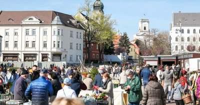 Megnyitott a piac a Dunakapu téren Győrben – ott jártunk: videó, fotók