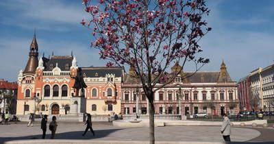 Enyhén csökkent a fertőzöttségi arány Nagyváradon
