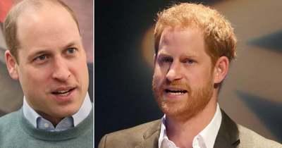 Megdöbbentő: nem találkozik egymással Harry és Vilmos herceg