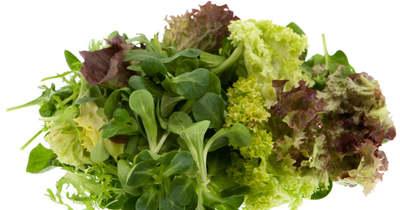 A fogyókúra királynői: fedezzük fel a salátákat!