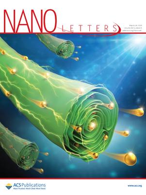Magyar kutatók vizsgáltak meg először egy fertőzőképes koronavírus szerkezetét