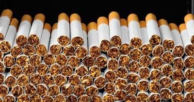 Csempészcigarettát és -alkoholt foglaltak le a pénzügyőrök, Veszprém megyében is lecsaptak