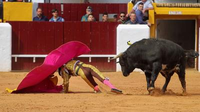 A bikákat leölik, a matadorokat segítik