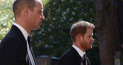 A békülés szélén Vilmos és Harry? Itt a testbeszéd szakértők véleménye