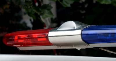 Szörnyű tragédia, fának csapódott egy önvezető autó