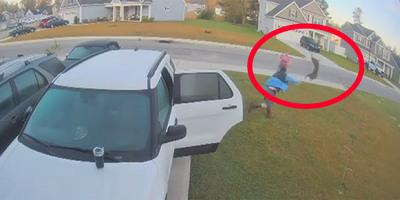 Éppen beszálltak volna a kocsijukba, amikor a semmiből rájuk támadt egy veszett hiúz - videó