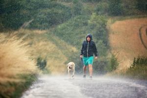 Még mindig sokan hiszik, hogy viharban a fa alatt biztonságos