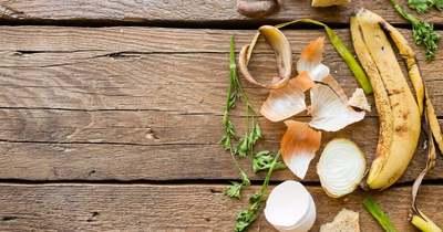 3 módszer, amivel csökkenthető az élelmiszerpazarlás