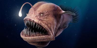 Horror: nem fogsz ma aludni, ha meglátod, mi rejlik a tengerfenéken