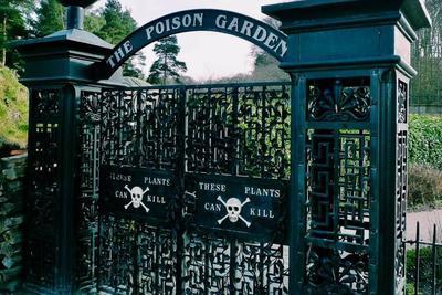 Íme, a világ legveszélyesebb kertje