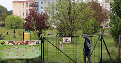 Kutyafuttatókat is eladna Kertvárosban a baloldali városvezetés