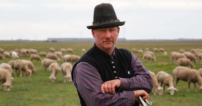 A tószegi Papp Zsolt beleszületett a pásztoréletbe