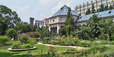 4+1 budapesti kirándulási tipp védettségi igazolvány nélkül
