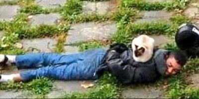 10 alkalom, amikor cicák mindennél meglepőbb helyen pihentek le - Galéria