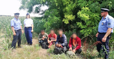 Ivándárdánál kaptak el migránsokat a rendőrök