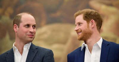 Végre lehullott a lepel Vilmos és Harry herceg kapcsolatáról