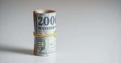 Százmillió forintnyi áfát mulasztott el befizetni egy vállalkozó