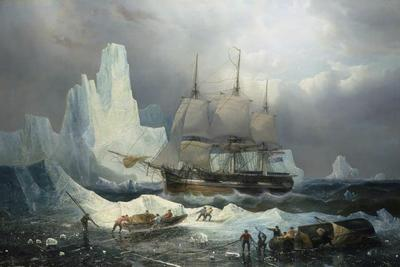 Azonosították a végzetes sarkvidéki expedíció első áldozatát