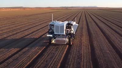 Áttörés a mezőgazdaságban: a hagyományos gyomirtás már a múlté, jöhetnek a robotok