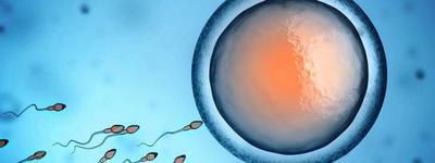 Honnan tudjam, hogy elértem a menopauzát, ha fogamzásgátlót szedek?
