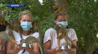 Exatlon -Majmokkal lazultaka Kihívók