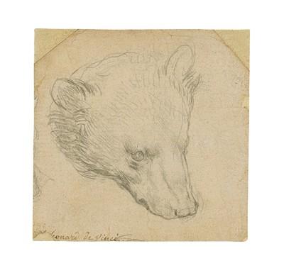 Leonardo egyik leghíresebb alkotására emlékeztet ez a rajz