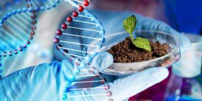 Friss: szaktanári vélemény a biológia érettségiről!