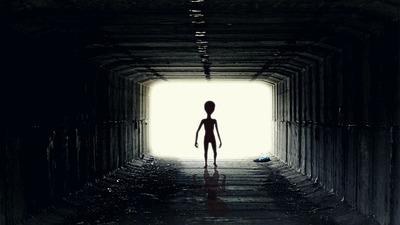 Megszólalt a Harvard Egyetem professzora: bizonyítékot talált az idegenek létezésére