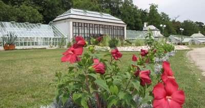 Híres kertek, kertészek a Balatonnál
