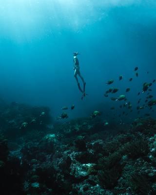 Rejtélyes, beazonosíthatatlan csontvázat találtak a Földközi-tenger mélyén - Videó