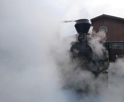 Ismét pöfög Gemenc erdejében a felújított Rezét gőzös