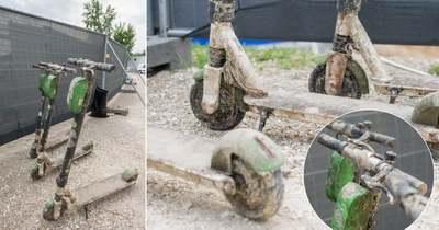 """Megdöbbentő dolgokat rejt a Duna: ezeket a """"kincseket"""" találták a Lánchídnál – Fotók!"""