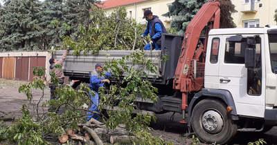 Pusztított a vihar Orosházán, már zajlik a romeltakarítás