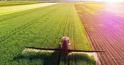 Precízebb tápanyagpótlás növényvizsgálatra alapozva