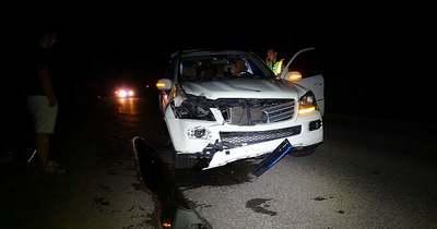 Póni ugrott elő az éjszakából, a sofőrnek esélye sem volt elkerülni az ütközést – Fotók