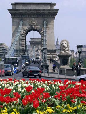 Siratják a Clark Ádám téri ikonikus virágágyást a budapestiek – visszakapják egyáltalán?