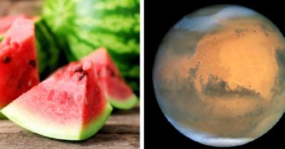 New York Times: görögdinnyét találtak a Marson!