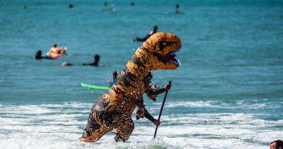 Vigyázat, dinoszaurusz a vízben!
