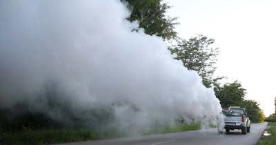 Hatalmas szúnyogirtó hadművelet Győrben – Mutatjuk a helyszíneket és a dátumokat