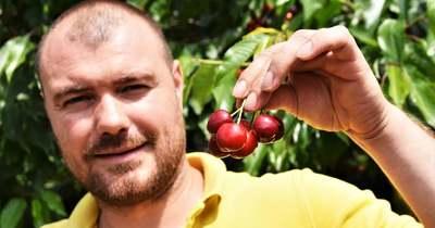 Jó termésátlagban bíznak a nagykörűi gazdák