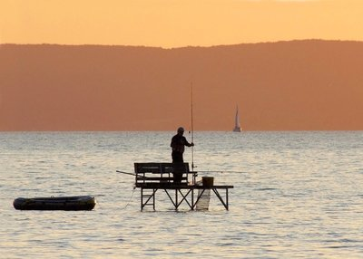 Uniós oltalmat kapott két Balatoni hal