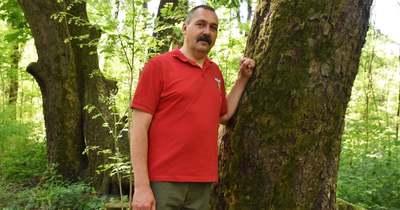 Vörösmarty is üldögélt az újszászi bújtatott vadgesztenyefa alatt