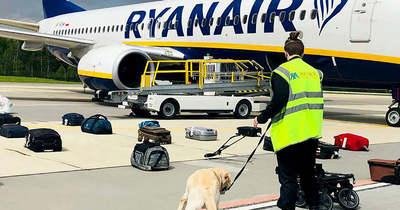 A Ryanair-pilótának nem volt más választása Belarusz felett